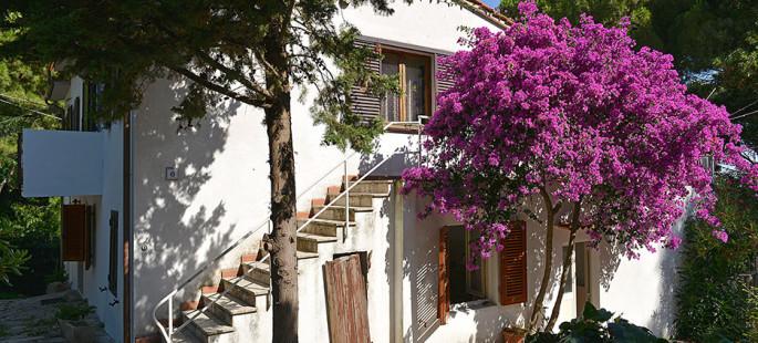 Appartamento con discesa diretta al mare – Marciana Marina